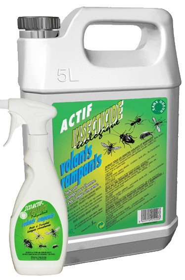 Insecticide polyvalent tous insectes King